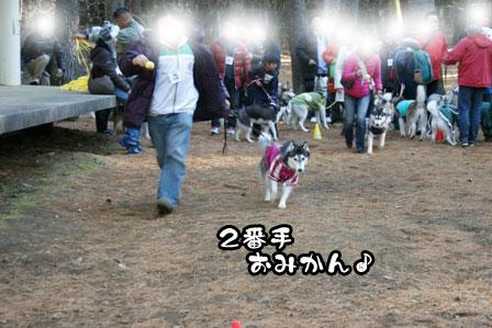 26_20111210192605.jpg
