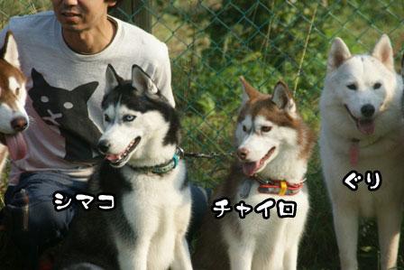 27_20111013210022.jpg
