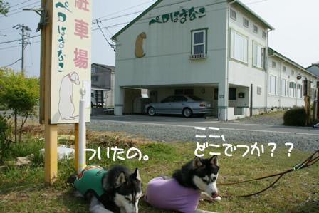 28_20100601205748.jpg