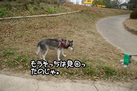 28_20110116235527.jpg
