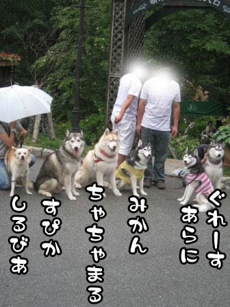 28_20110804210057.jpg