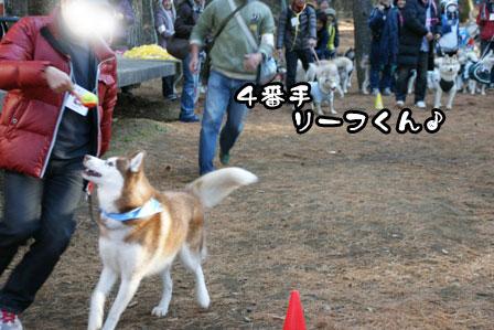 28_20111210195747.jpg