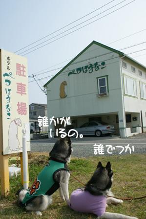 29_20100601205758.jpg