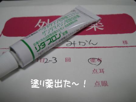 2_20100810192508.jpg
