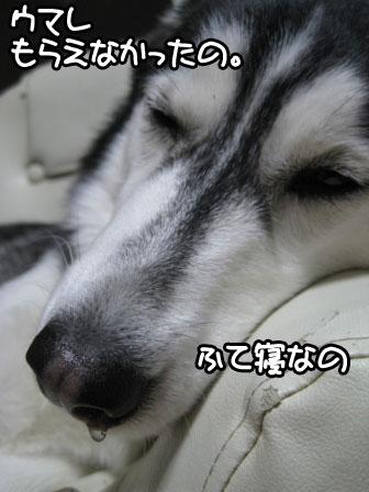2_20110129192539.jpg
