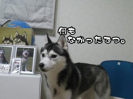 2_20110614212951.jpg