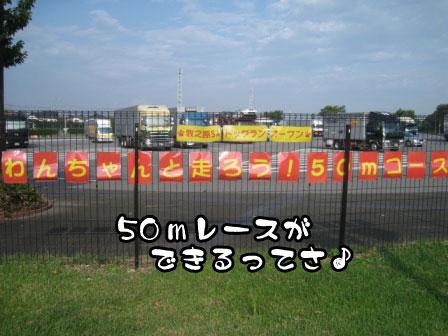 2_20110801193303.jpg