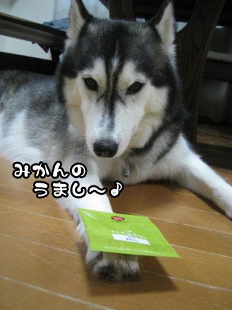 2_20110824211838.jpg