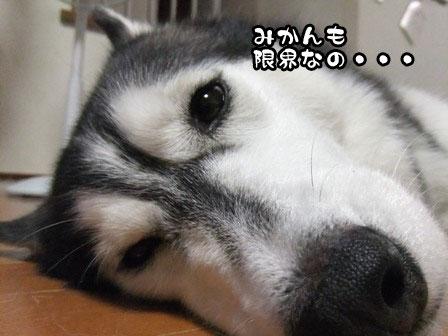 2_20110913214747.jpg