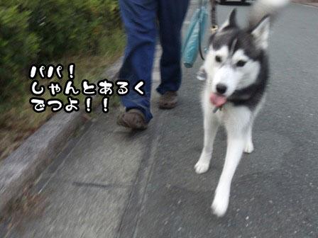 2_20110919201512.jpg