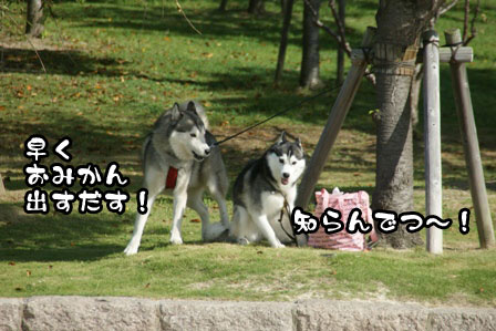 2_20111002200037.jpg