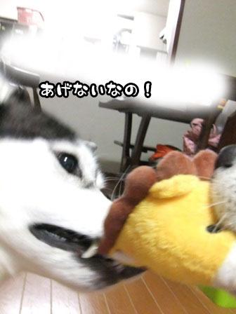 2_20111021212255.jpg
