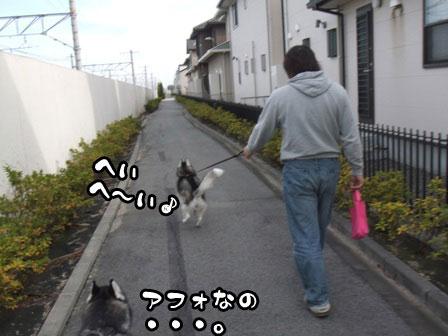 2_20111127203840.jpg
