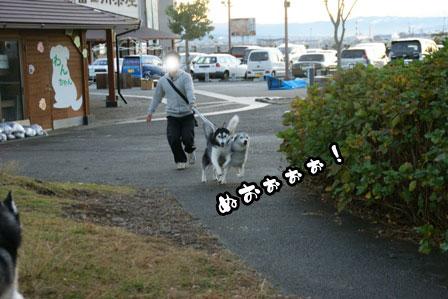 2_20111210192304.jpg