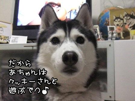 2_20120119185127.jpg