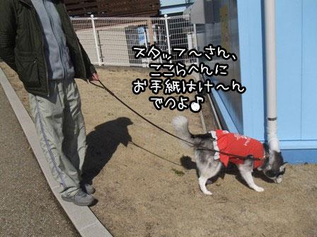 2_20120304215417.jpg