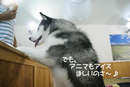30_20101009205619.jpg