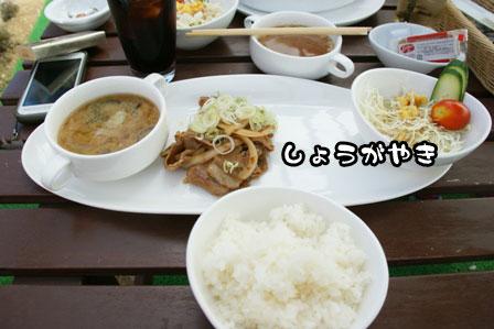 30_20111003204534.jpg