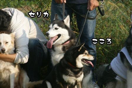 30_20111013210042.jpg