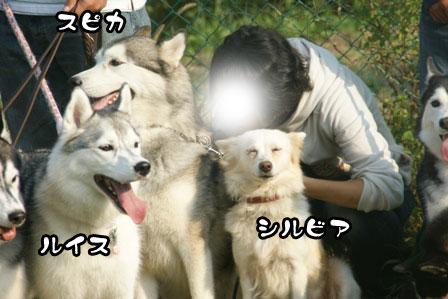 31_20111013210049.jpg