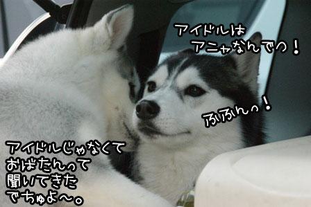 31_20120319190900.jpg