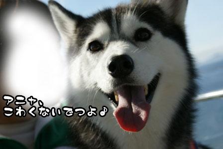 32_20111115211340.jpg