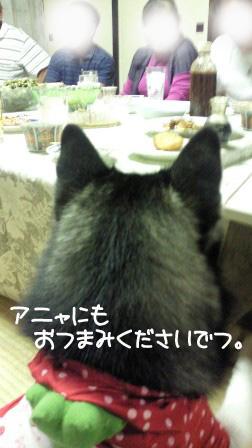 36_20101009205716.jpg