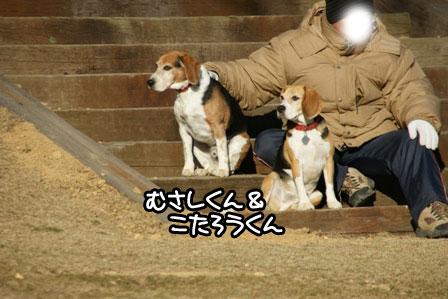 37_20110110211711.jpg