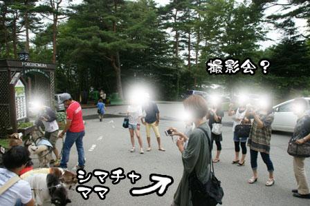 37_20110806204419.jpg