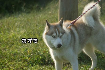 37_20111013210137.jpg