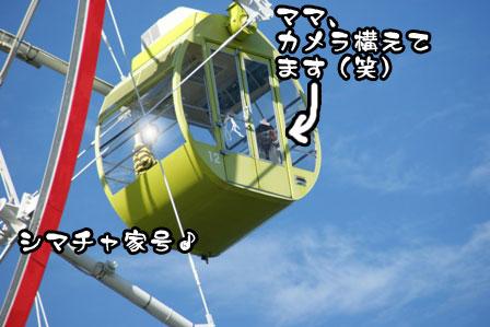37_20111115211415.jpg