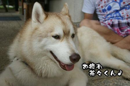 38_20110806204425.jpg