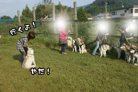 38_20111013210144.jpg