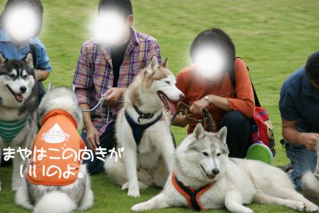 39_20101004190444.jpg