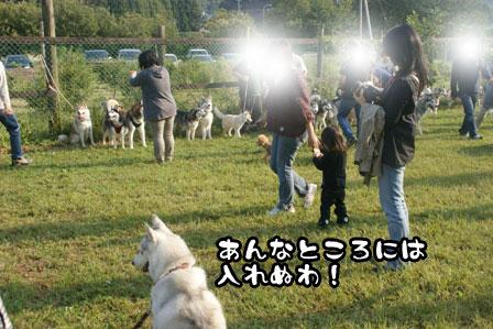 39_20111013210151.jpg