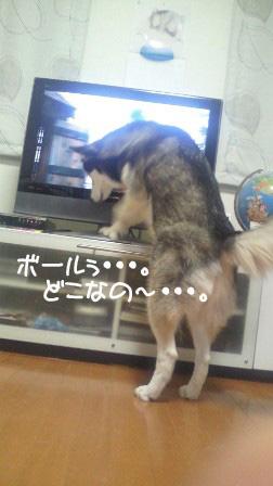 3_20100807154136.jpg