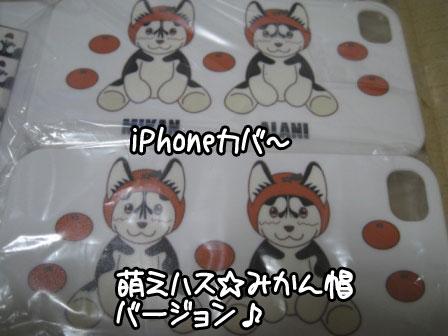 3_20110202181404.jpg