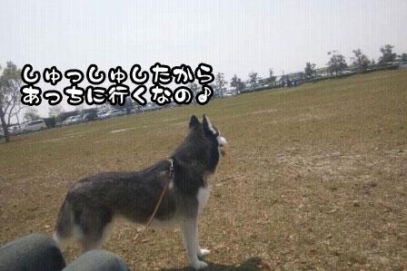 3_20110424204658.jpg