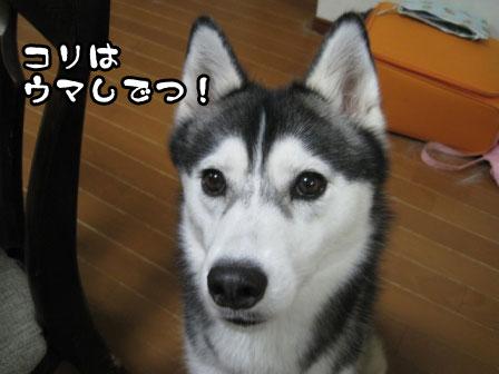 3_20110705202326.jpg