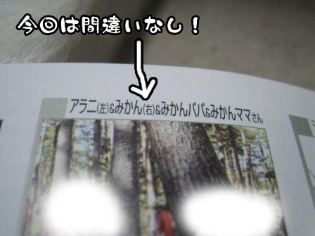3_20110729191629.jpg