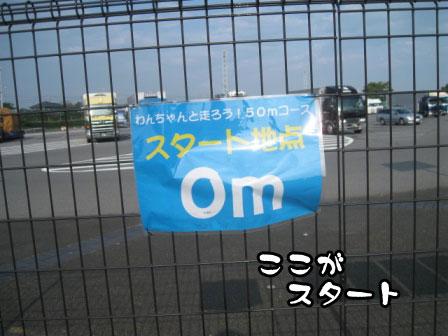 3_20110801193307.jpg