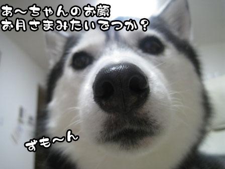 3_20110808200501.jpg