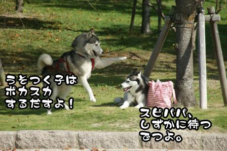 3_20111002200042.jpg