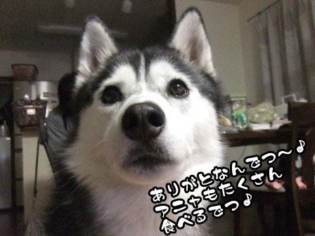 3_20111202210750.jpg