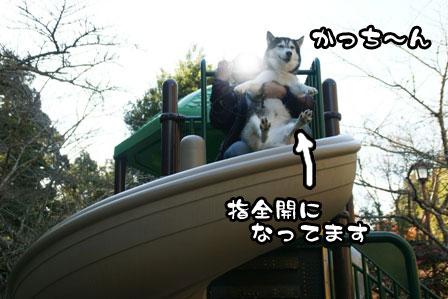 3_20111226211407.jpg