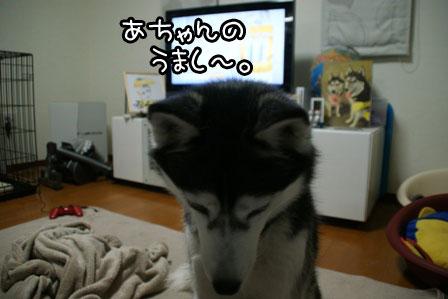 3_20120120211538.jpg