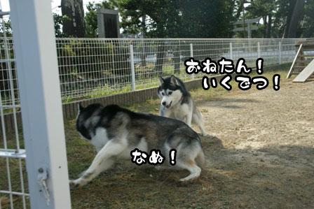 40_20111015221619.jpg