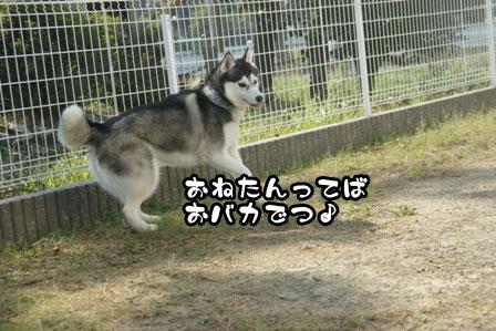42_20111015221633.jpg