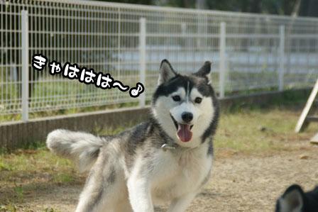 43_20111015221641.jpg