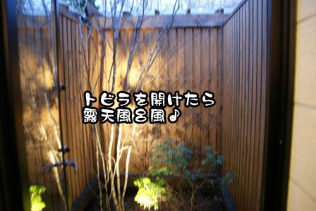 46_20111210210156.jpg